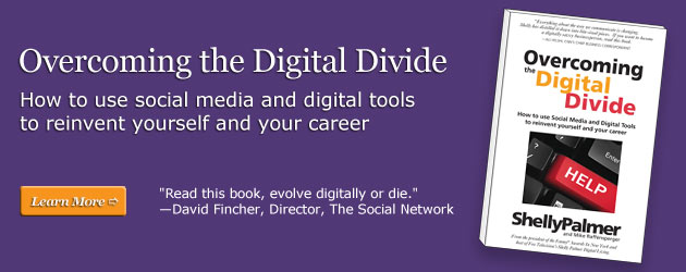 Shelly Palmer's New Book, Overcoming the Digital Divide