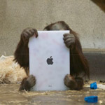 Apps for Apes