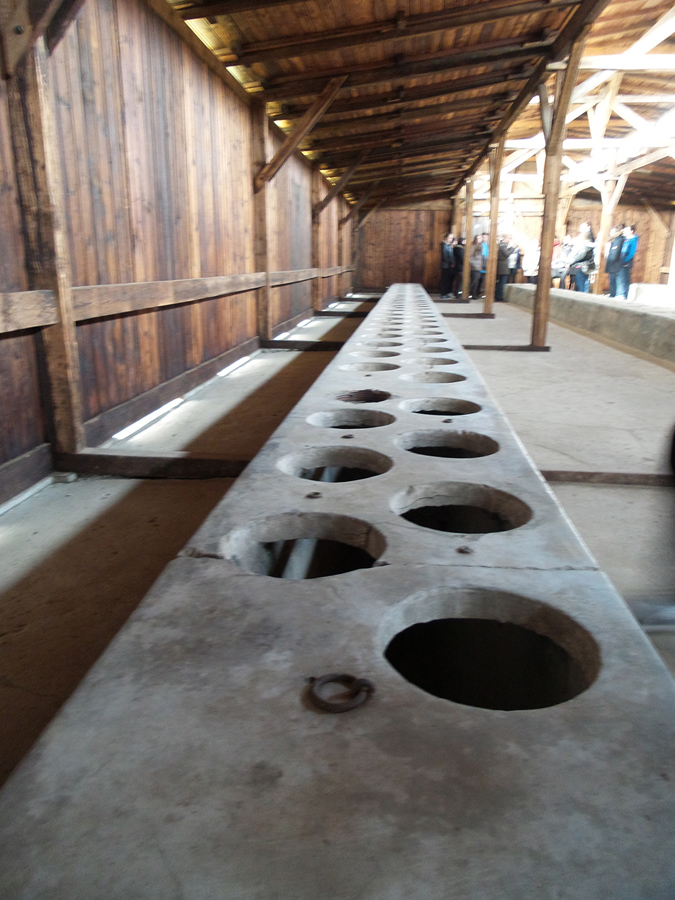 Inside the latrine barracks at Birkenau (notice the walls don't touch the roof)