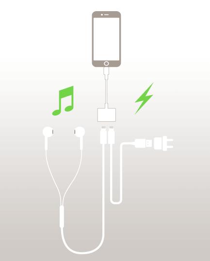 Belkin iPhone 7 Rig