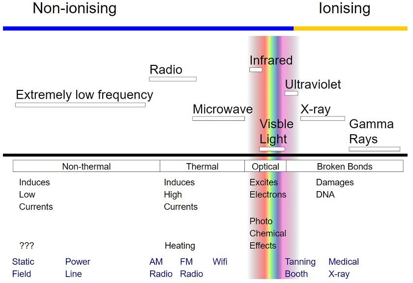 radiation scale