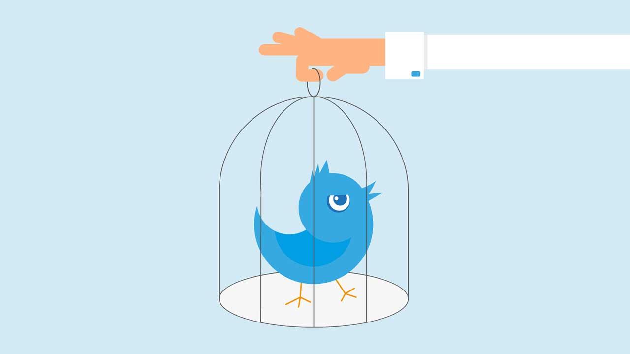 Twitter Bird in Cage